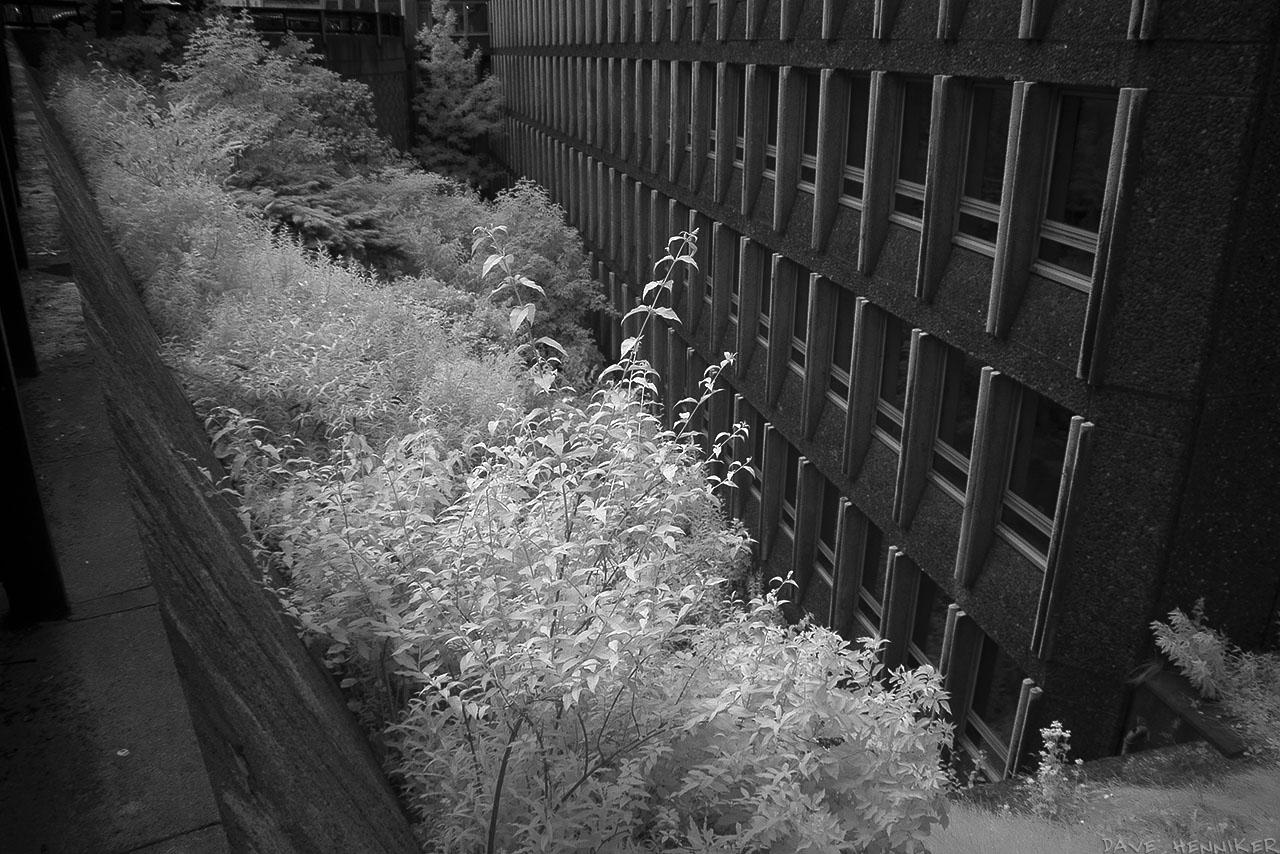 Argyll_House_IR01