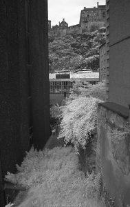 Argyll_House_IR02