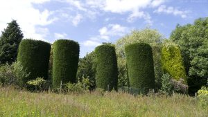 Braid_Meadow_topiary01