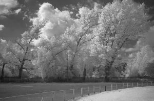 WaterOfLeithMurrayfield08IR