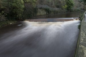 Weir05Belford