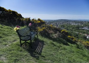 blackford_hill_bench