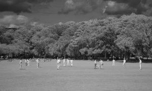 cricket_IR02