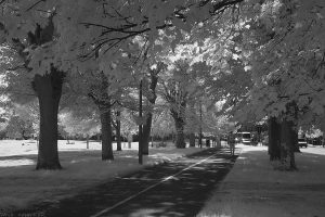 leamington_walk20_IR