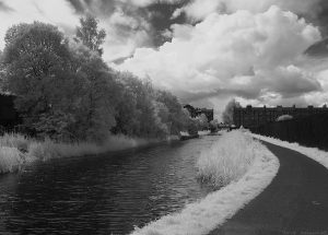 lochrin-basin2012july-ir17