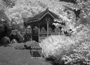 Botanic28