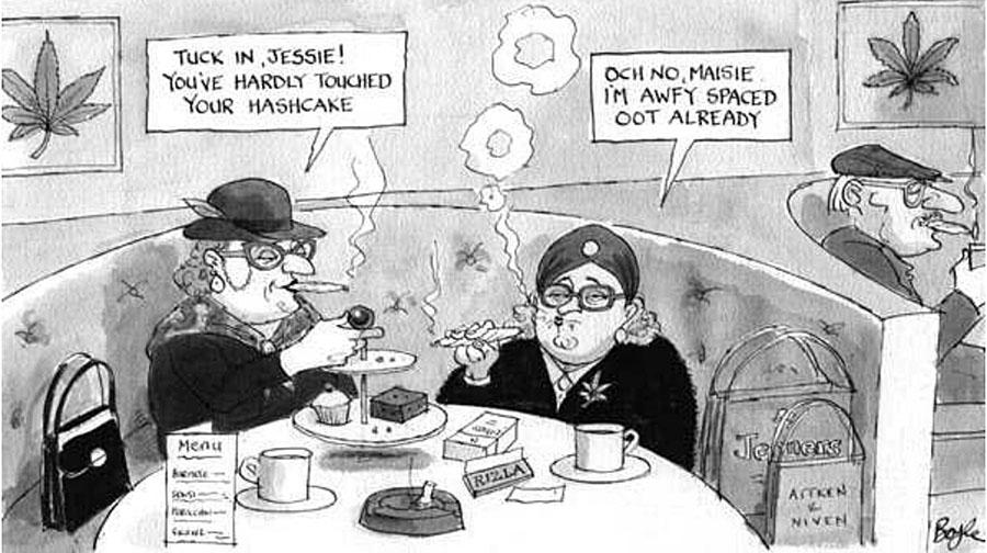 BoyleCartoon