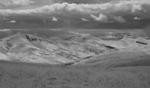 Capelaw-Ridge02_IR