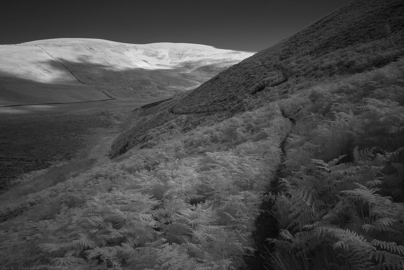 DensCleugh20ir