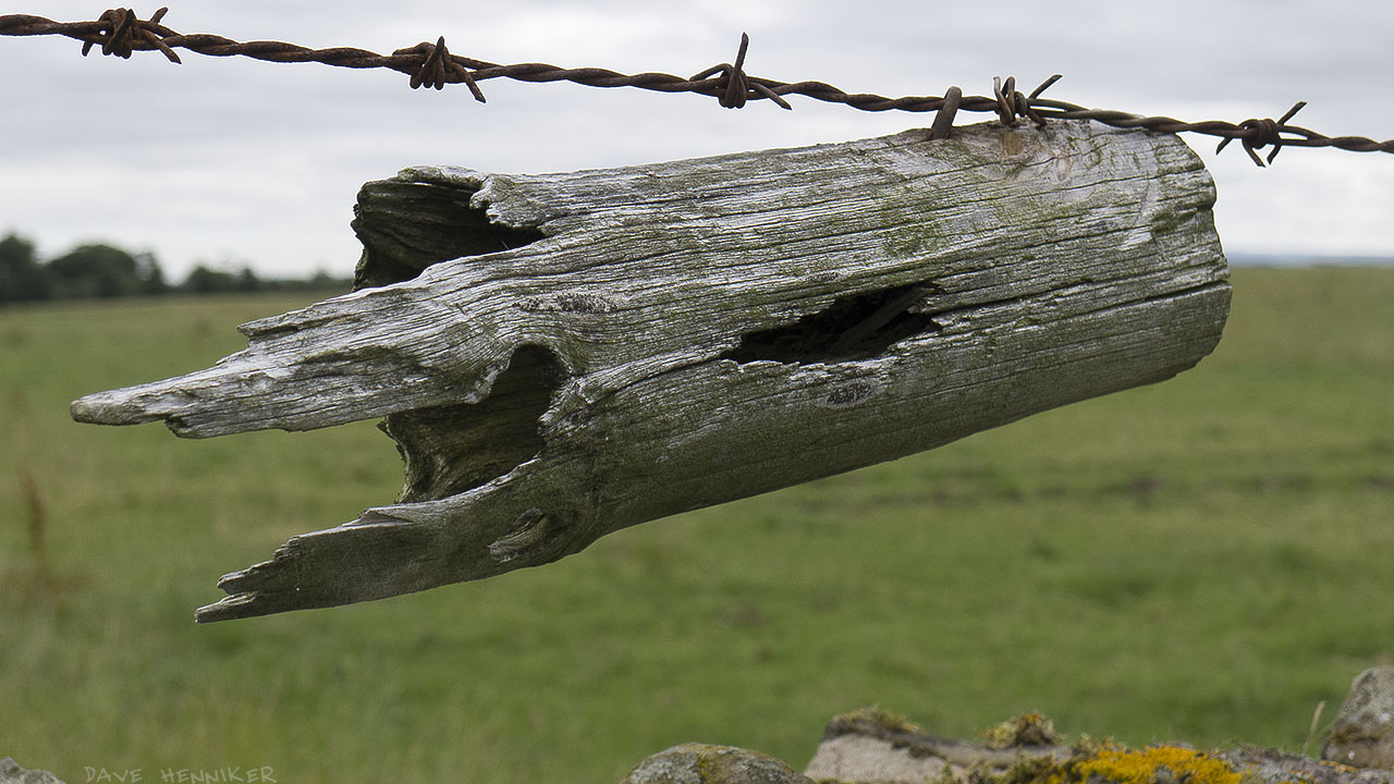 Fencepost02