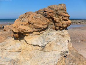 Geology2012a
