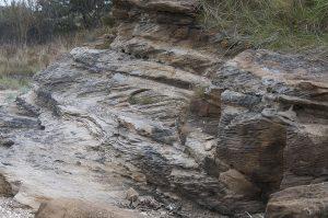 Geology2014b