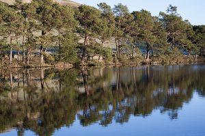 Glencorse2015_Jan