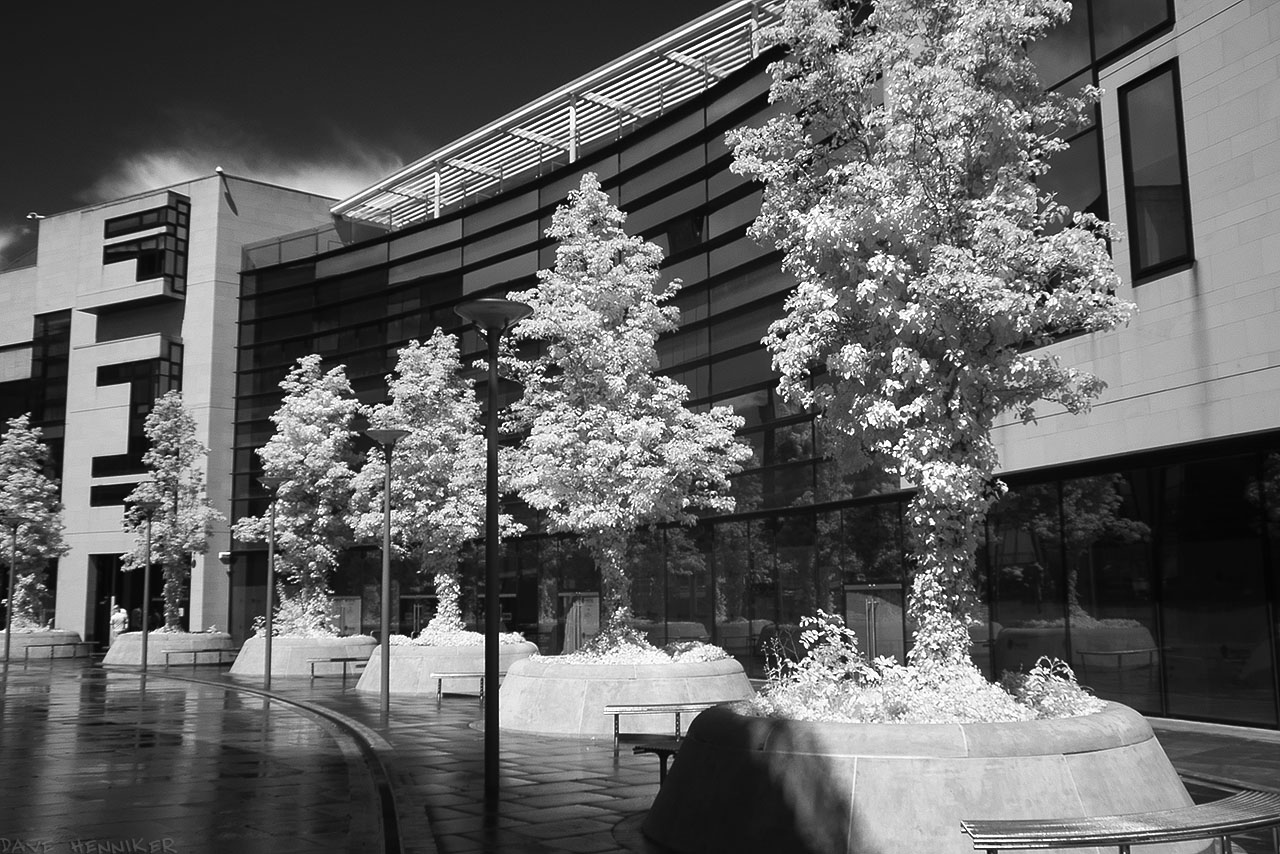 GreensideRow04ir