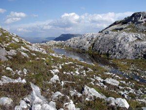 Loch Allt an Daraich