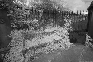 NorthMerchiston24IR