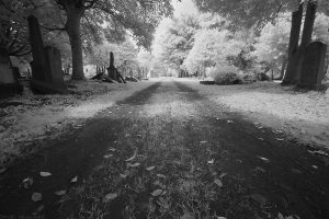 NorthMerchiston27IR
