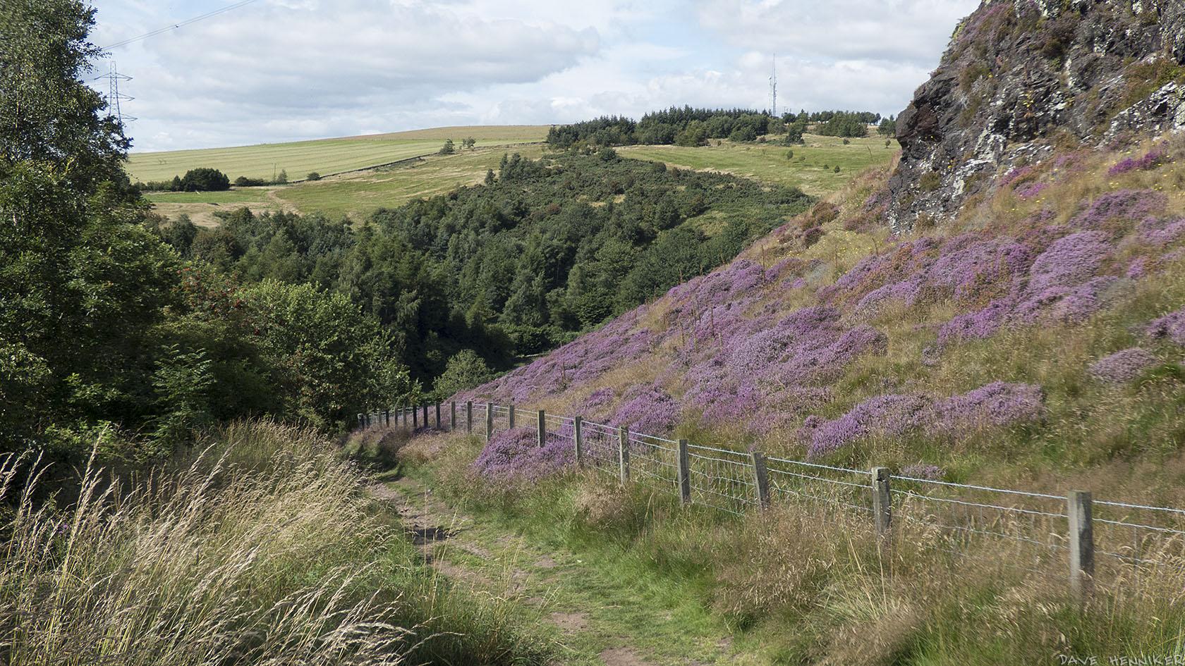 Torduff-Path