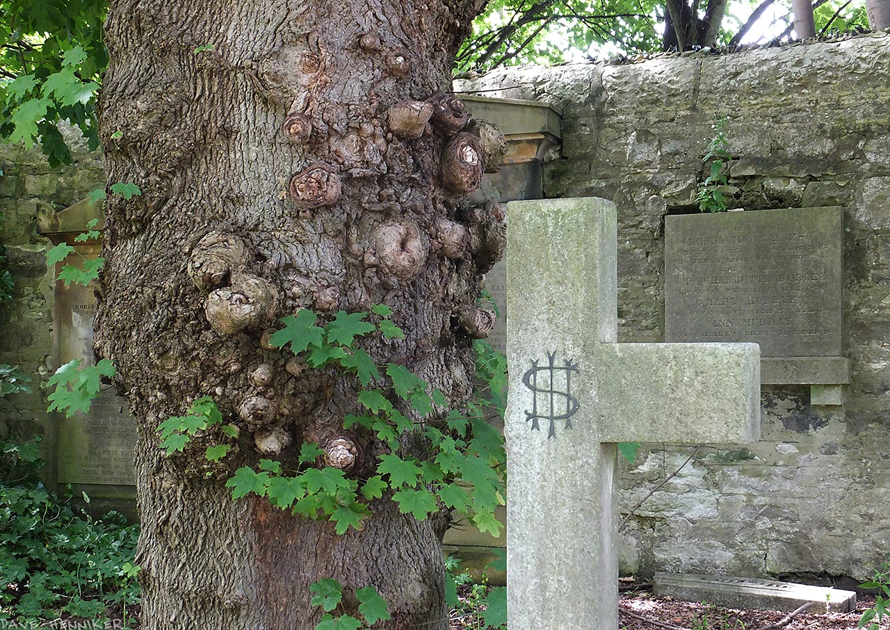 WarristonCemetery42