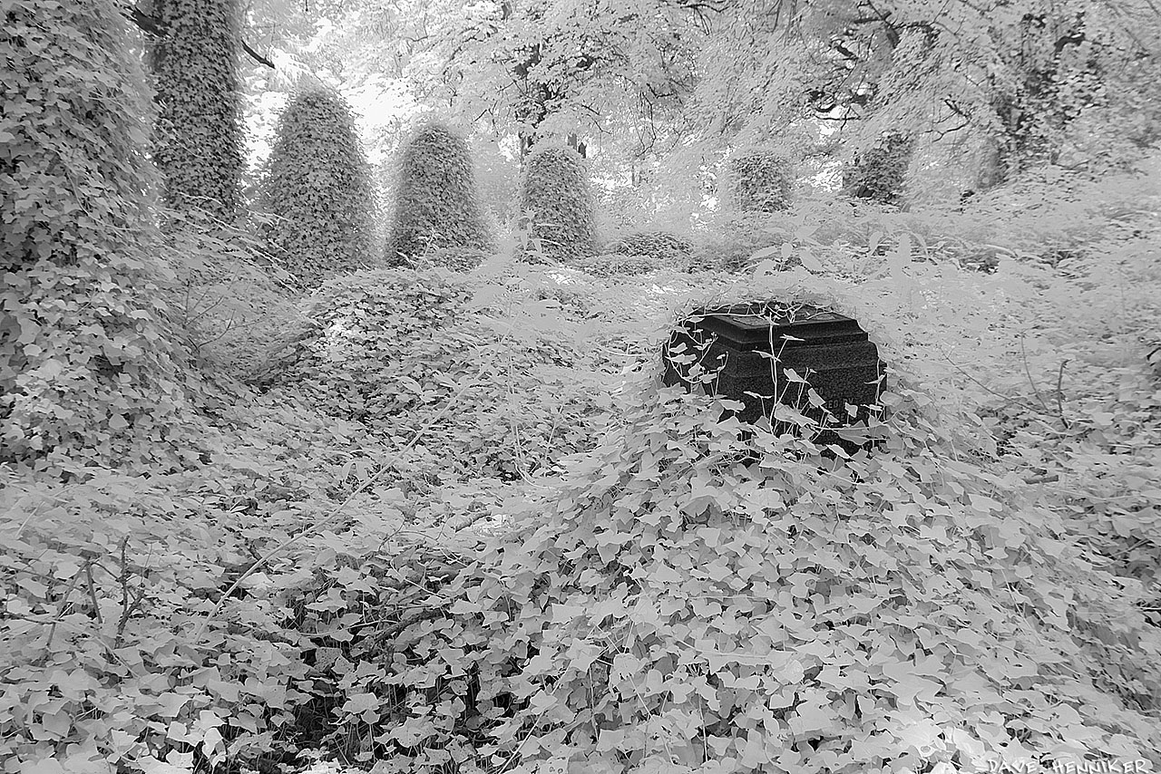 WarristonCemeteryIR19