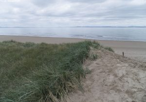 aberlady_bay13may01fj