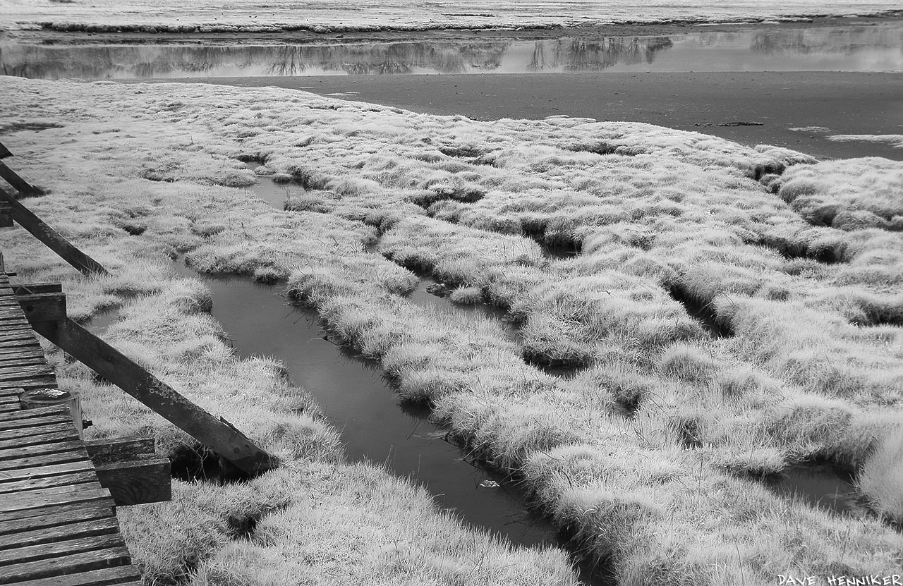aberlady_bay13may02IR