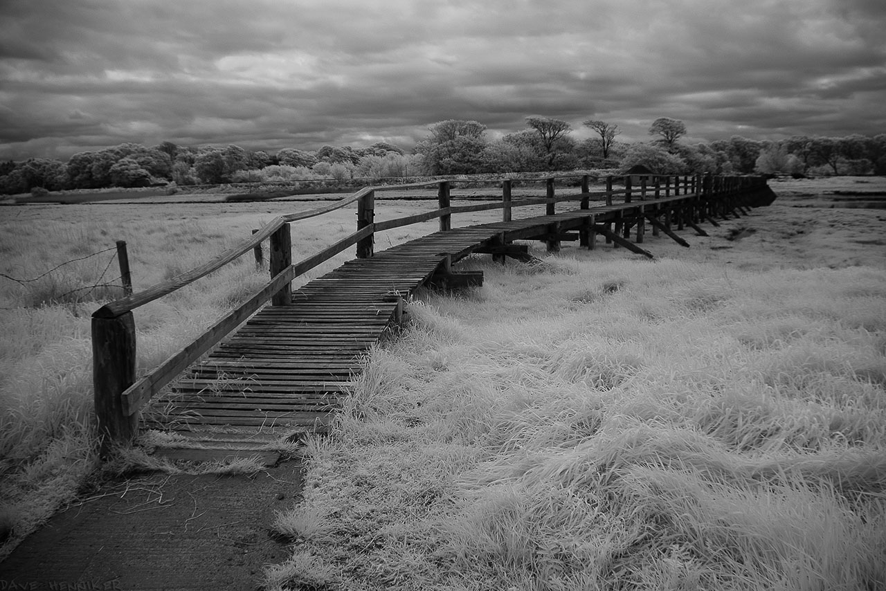 aberlady_bay13may03IR