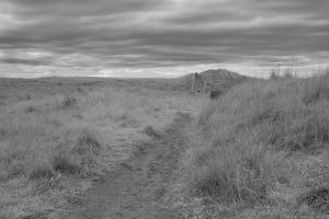 aberlady_bay13may07IR