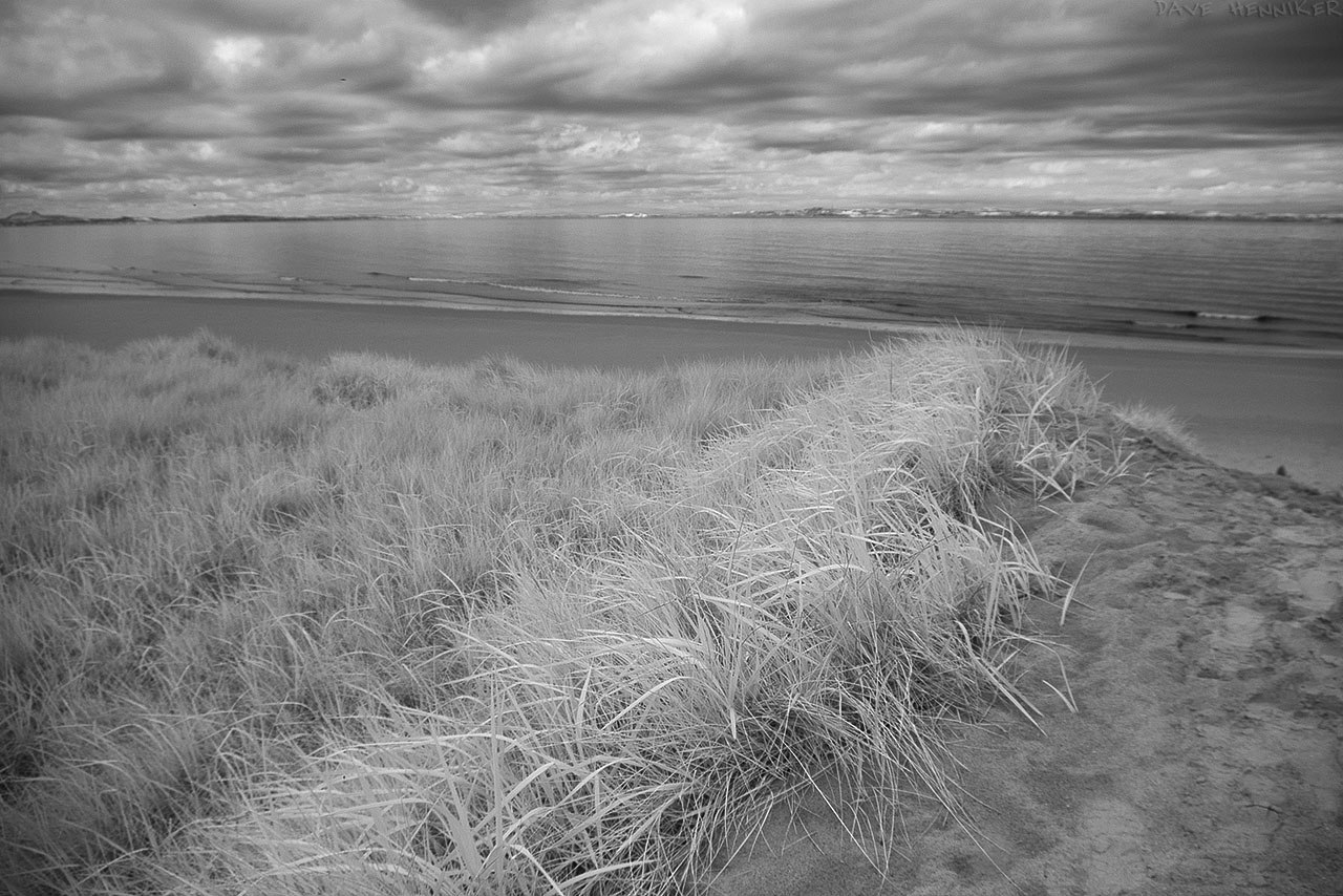 aberlady_bay13may08IR