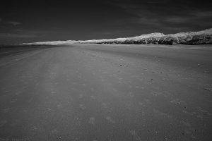 aberlady_bay2014mar03ir