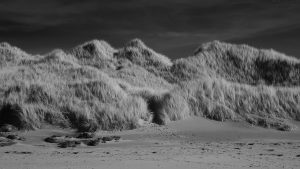aberlady_bay2014mar07_1920ir