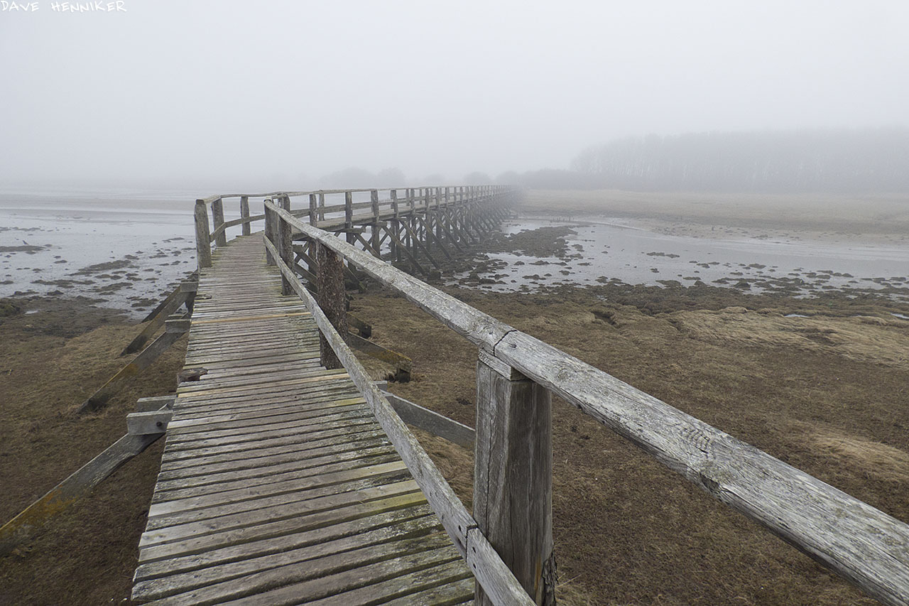 aberlady_bay_bridge06