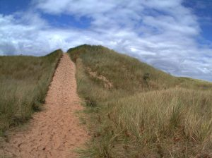aberlady_bay_path_end