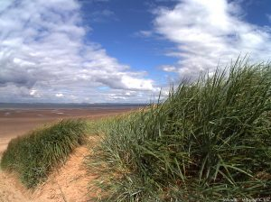 aberlady_bay_path_end2