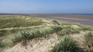 aberlady_bay_path_end20