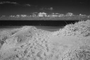 aberlady_bay_path_end9ir