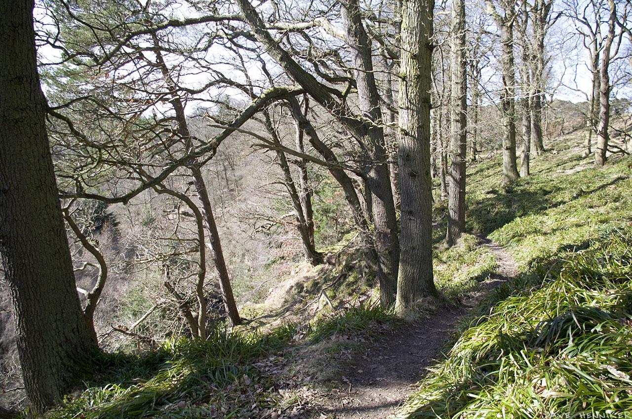 bilston-roslin-path15