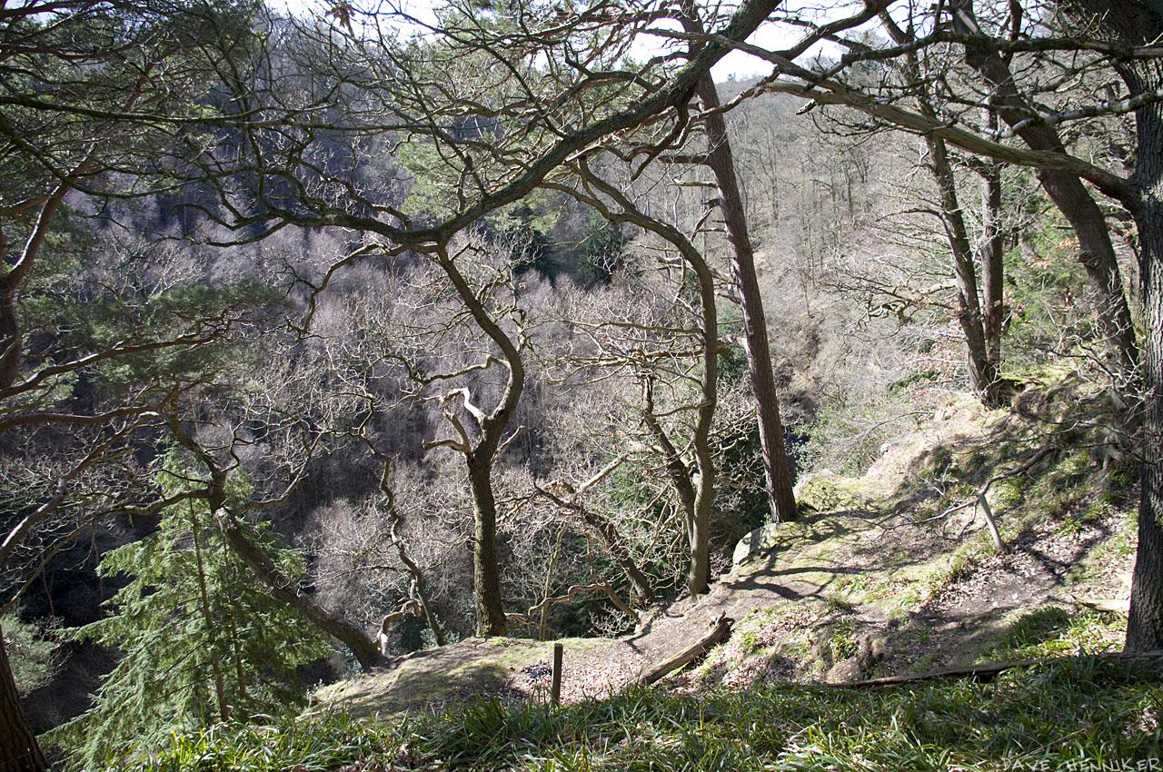 bilston-roslin-path16