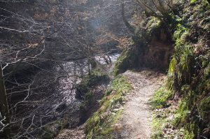 bilston-roslin-path19