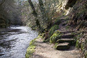 bilston-roslin-path29