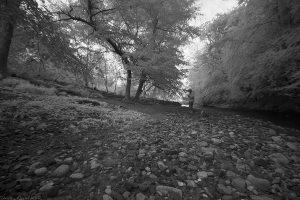 bilston-roslin-path_ir14