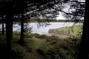 bonaly_res_1005a