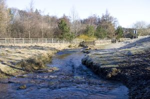 braid_burn06_bonaly