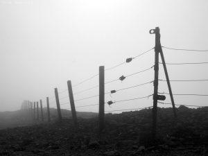 Caerketton Misty 08