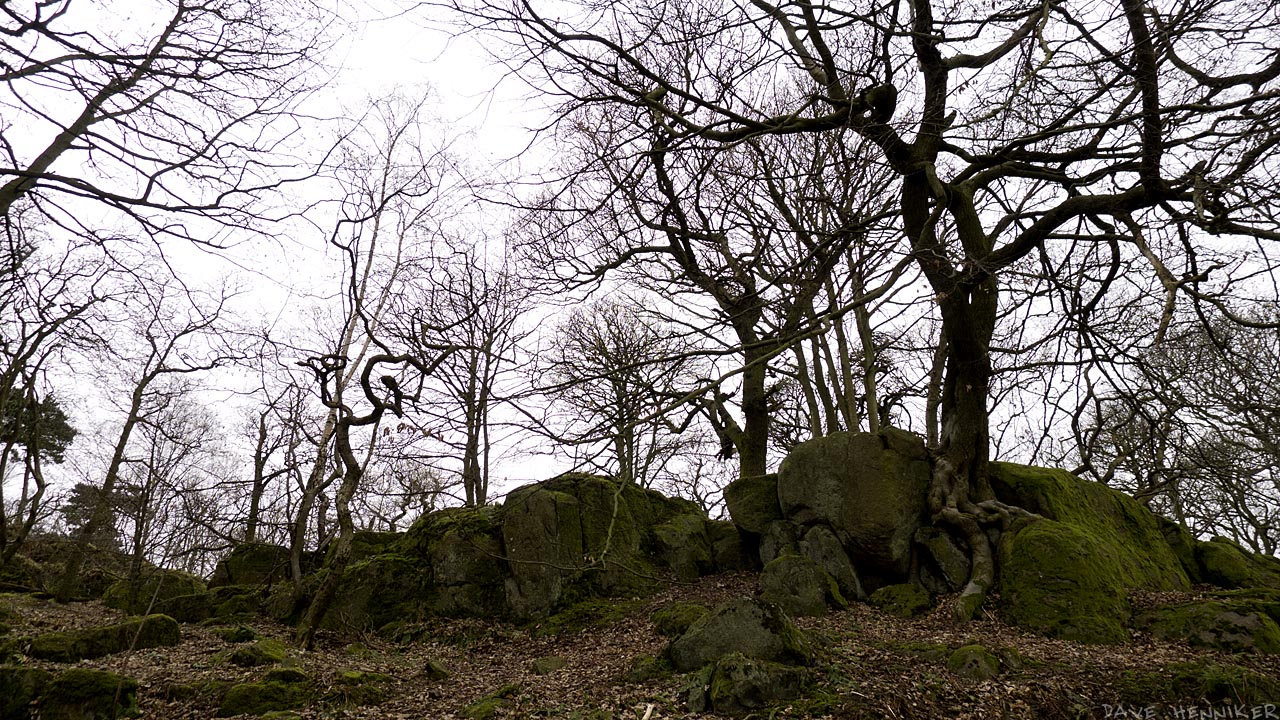 corstorphine_hill18