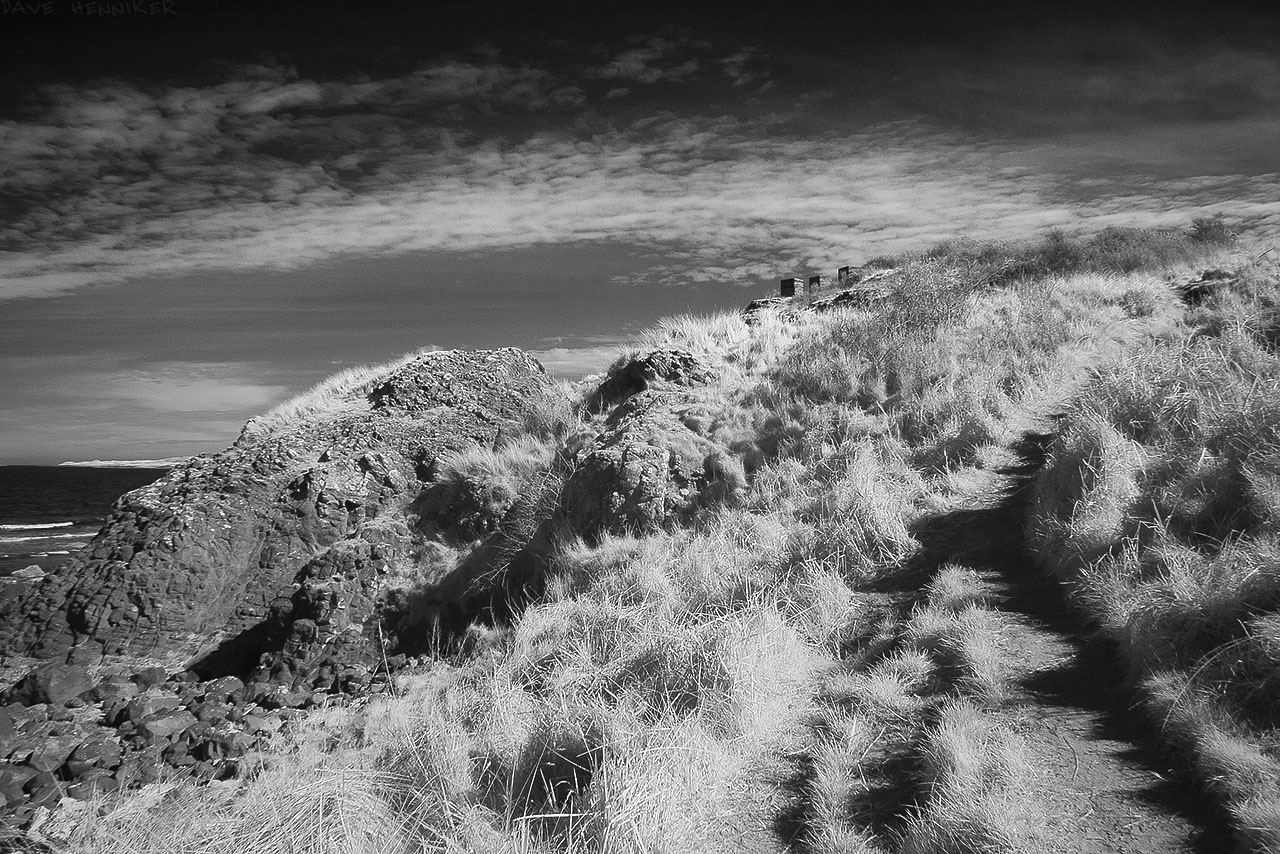 gullane_bay2014_18ir