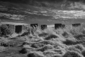gullane_bay2014_21ir