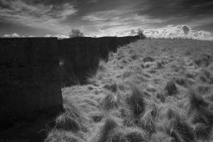 gullane_bay2014_22ir