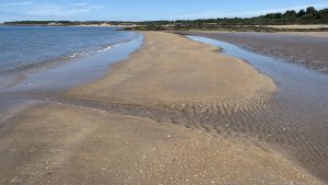 gullane_bay_2015june(c)