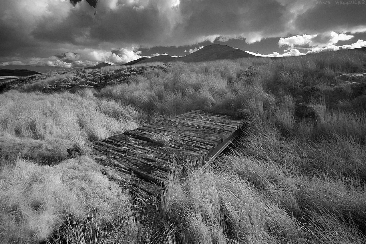 kitchen_moss_bridge_ir01